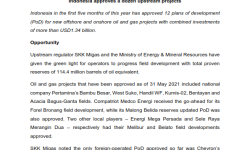 """MATRADE's Article - """"Indonesia approves a dozen upstream projects"""""""